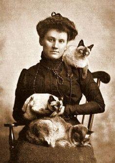 Victorian Cat Lady,,,
