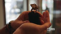 #bigreviewtv Liked on YouTube: Shotiros a Jewelry Stores in New York offering unique Jewelry