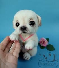 Ahhhhhhh cute animals puppies, cute funny animals, animals and pets Tiny Puppies, Teacup Puppies, Cute Dogs And Puppies, Doggies, Cutest Dogs, Teacup Pug, Teddy Bear Puppies, Cute Animals Puppies, Adorable Puppies