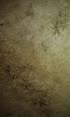 Cracked plaster with wax. Work by Tiffany Alexander of Blank Canvas Design Studio.