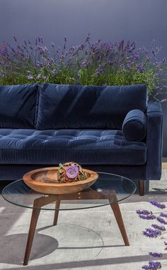 Blue Leather Chair Tufted Seat With Bolsters