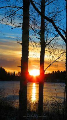 Anu (@anu_kokkila) | Twitter Nature Photography, My Photos, Celestial, Sunset, Twitter, Outdoor, Outdoors, Nature Pictures, Sunsets