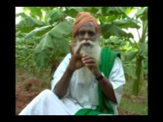 Uzhavukku Uyiroottu : Pomegranate Cultivation (28/12/2013) - Part 2 - YouTube