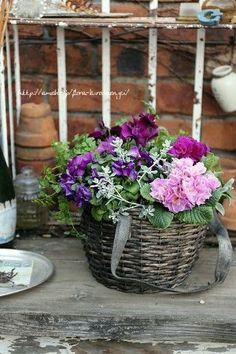 Baskets full of flowers. Vegetable Boxes, Purple Garden, Pretty Flowers, Beautiful Bouquets, Natural Garden, Garden Pots, Dish Garden, Container Flowers, Bountiful Baskets