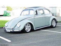 Best Swiss Cal Look & Resto Cal Beetles