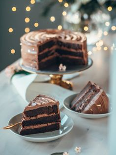 Salted Caramel Chocolate Cake, Chocolate Crinkle Cookies, Chocolate Crinkles, Paleo Chocolate, Chocolate Caramels, Best Fudge Recipe, Fudge Recipes, Cookie Recipes, Lion Cakes