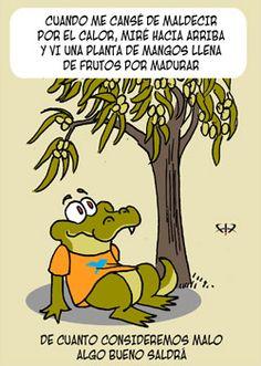 Yac por Fix - 22/11/2012