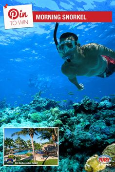 Repin this image and include the tag #FuryFreebie to win a Key West Vacation for 2! Your trip will include this Morning Snorkel trip plus 5 days/4 nights at the Key West Best Western Key Ambassador Resort. Make sure to repin by 09/30/2015 to be entered!