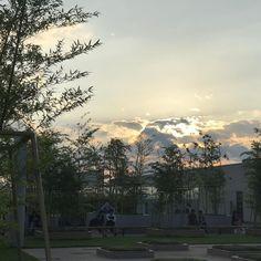 癒されに来た先は綺麗な夕陽