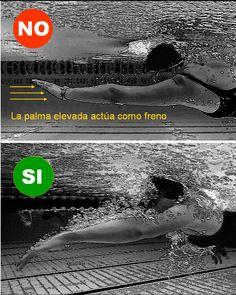 La natación es un deporte muy técnico en el que cualquier defecto se traduce en una apreciable pérdida de eficiencia.     Es muy difícil n...