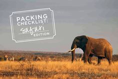 Don't know what to pack for your big African safari adventure? Check out this great packing list from www.brownelltravel.com! #packing #safari