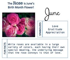 June Birth Flower Giving Flowers, Happy Flowers, Love Flowers, June Birth Flower, Birth Month Flowers, Birth Month Meanings, My Moon Sign, Astrology Planets, Month Signs