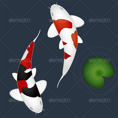 Japanese Carps - #Animals #Illustrations Download here: https://graphicriver.net/item/japanese-carps/31294?ref=alena994