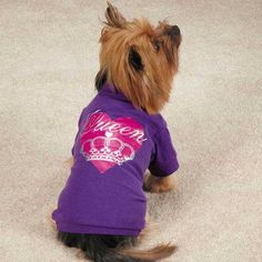 Zack & Zoey Queen Pup Dog T-Shirt - Purple at BaxterBoo