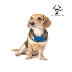 """Dark blue dog bow tie - 30% of sales donated to dog shelters """"dog bow tie"""" symbol for animal support"""