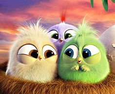 Angry Birds cute lol adorable babies