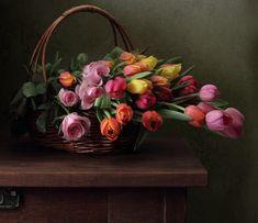 фотографии тюльпанов – 60