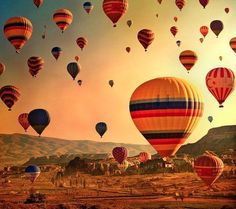 Ride in a hot air baloon and see the Albuquerque festival of balloons