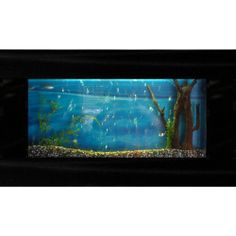 Bayshore Large Rectangular Wall Aquarium Hidden compartment for 4 electrical outlets. Safe, tempered glass tank. Easy access to the aquarium. Beautiful Australian Great Barrier Reef background. Powerful multi-functional submersible filter.  #BayshoreIndustries #PetProducts