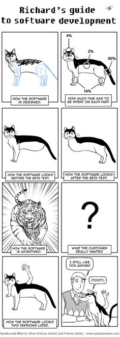 Software Development Explained With A Cat