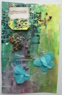 cabinets de curiosités: les graines font des fleurs