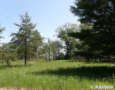 #Burnett County, Wisconsin Land for Sale; Farmland, Vacant Lots, Waterfront Lots, Large Acreage and more... http://idxwi.thelandman.net/i/Burnett_County_Wisconsin_Land_for_Sale