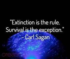 """Extinction is the rule. Survival is the exception."" Will humanity be the first species to self exterminate? Best Qoutes, Carl Sagan, Atheism, Science And Nature, Random Thoughts, Deep Thoughts, Cosmos, Wise Words, Philosophy"