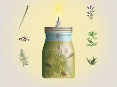 Wundertüte: Ätherische Öle führen, mit etwas Glück, Stechmücken in die Irre.