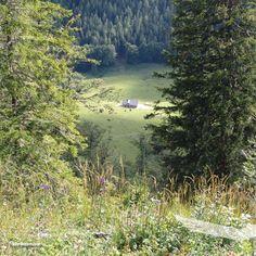 Berg, Smartphone, Wanderlust, River, Mountains, Nature, Outdoor, Wilderness, Mountain Range
