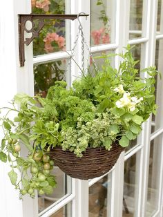 I love this...hanging herb basket!