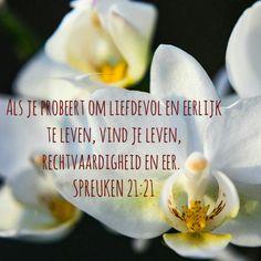 #bijbel #spreuken