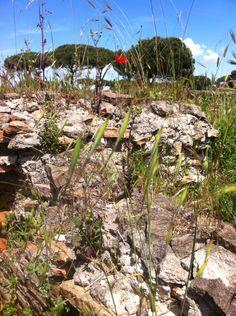 A scene from Ostia near Rome