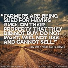 A threat to an organic farmer anywhere, is a threat to all organic farmers everywhere! Join us to Stop Monsanto www.fooddemocracynow.org #GMOs #StopMonsanto #Contamination Food Democracy Now! Divest Monsanto Now Farmers vs Monsanto