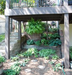 Thinking about a shade garden under the sunroom and deck