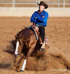 Cutting western quarter paint horse appaloosa equine tack cowboy cowgirl rodeo ranch show pony pleasure barrel racing pole bending saddle bronc gymkhana Cowgirl And Horse, Horse Love, Appaloosa, Pretty Horses, Beautiful Horses, American Quarter Horse, Quarter Horses, Paint Horse, Cutting Horses