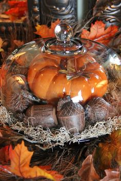 moss, wooden acorns, and a big pumpkin. Have the acorns & pumpkin &muse the glass cake plate Cloche Decor, Thanksgiving Decorations, Fall Decorations, Thanksgiving Ideas, Thanksgiving Wreaths, Seasonal Decor, Biggest Pumpkin, Autumn Display, Fall Displays