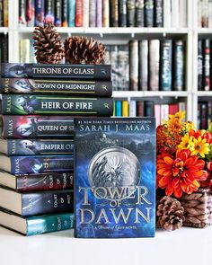 Good Thursday morning Bookworms!! Are you ready for the weekend?? It's almost here!! --- Tower of Dawn arrived in my mailbox late Tuesday afternoon and now it's going to sit on my shelf for who knows how long because I haven't even started reading the series yet.  I really need to get started on it soon!! ---  Five Bookish Facts About You. #AlltheBooksSept  1. I really really really love books. (Can't you tell? ) I'd rather be reading than doing pretty much anything else.  2. I have more…