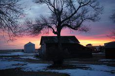 Winter sunrise on our farm in Northeast Colorado.
