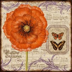 """Vintage Orange Poppy & Butterflies."""