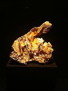 Goldene Schönheit
