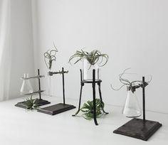 Vintage labware plant stand beaker