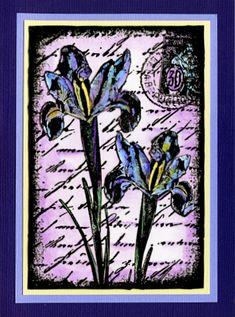 Card by Helen Conolly using Darkroom Door Inky Irises Collage Stamp. http://www.darkroomdoor.com/collage-stamps/collage-stamp-inky-irisesBlue Iris