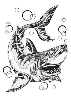Draw Sharks Shark by Andrey Kopyrin, via Behance - Owl Tattoo Drawings, Art Drawings Sketches, Animal Drawings, Shark Silhouette, Silhouette Tattoos, Great White Shark Drawing, Hammerhead Shark Tattoo, Rope Tattoo, Transférer Des Photos
