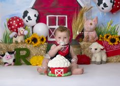 Farm First Birthday / White Ink Photography  Barn  Farm Smash Cake