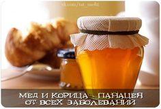 Обнаружено, что смесь меда и корицы излечивает большинство заболеваний. Древняя медицина использовала мед столетиями. Современные ученые также признают мед в качестве очень эффективного средства для л…
