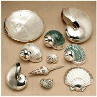 Italian Designer 99.5% Silver Embellished Shells