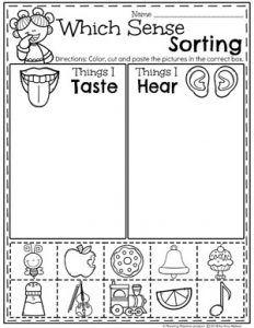 5 Senses - Planning Playtime Five Senses Kindergarten, Five Senses Preschool, 5 Senses Activities, My Five Senses, Kindergarten Science, Preschool Learning Activities, Preschool Curriculum, Preschool Printables, Preschool Lessons