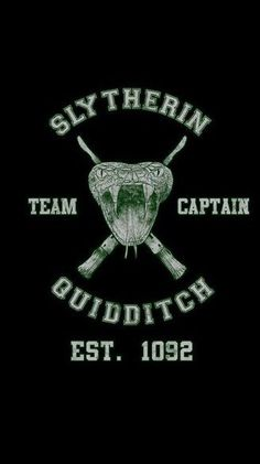 Slytherin Quidditch shirt, available @ Teepublic Slytherin Quidditch Hery Potter, Theme Harry Potter, Harry Potter Facts, Potter Barn, Slytherin Pride, Slytherin Aesthetic, Harry Potter Aesthetic, Slytherin Quotes, Draco Malfoy