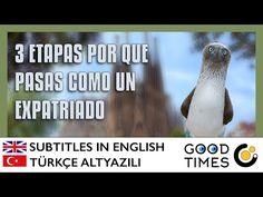3 Etapas por que pasamos como un expatriado (Subtitled / Altyazili) - YouTube