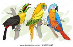 Tropical Birds vector Illustration by Roberto Chicano, via Shutterstock